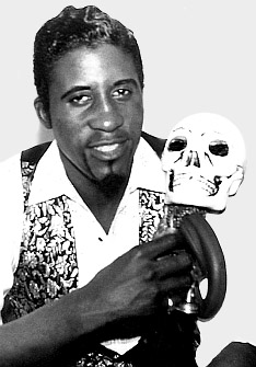 Image result for screamin jay hawkins